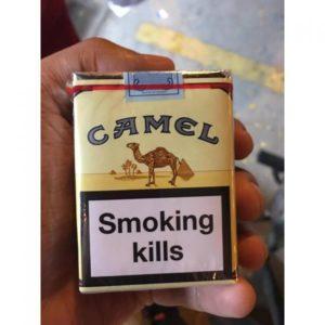 Camel Non Filter 10