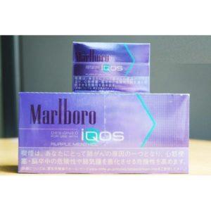 Marlboro Purple (1)
